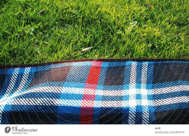 picknick Natur Pflanze Sommer Erholung Wiese Gras Wärme Linie Zufriedenheit Rasen weich Freizeit & Hobby Physik Quadrat Picknick