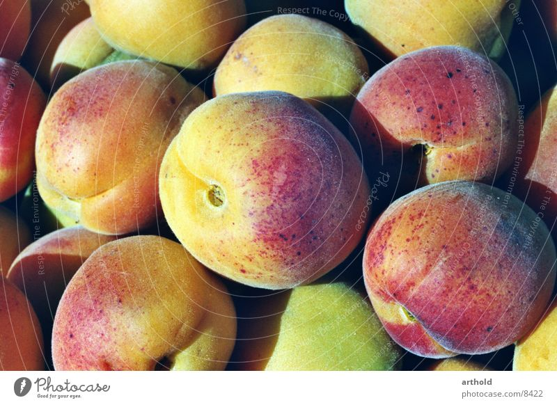 Aprikosen 2 Gesundheit Frucht süß lecker Stillleben saftig Aprikose Obstkorb