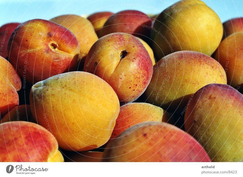 Aprikosen 1 Gesundheit Frucht süß lecker Stillleben saftig Korb Aprikose Obstkorb