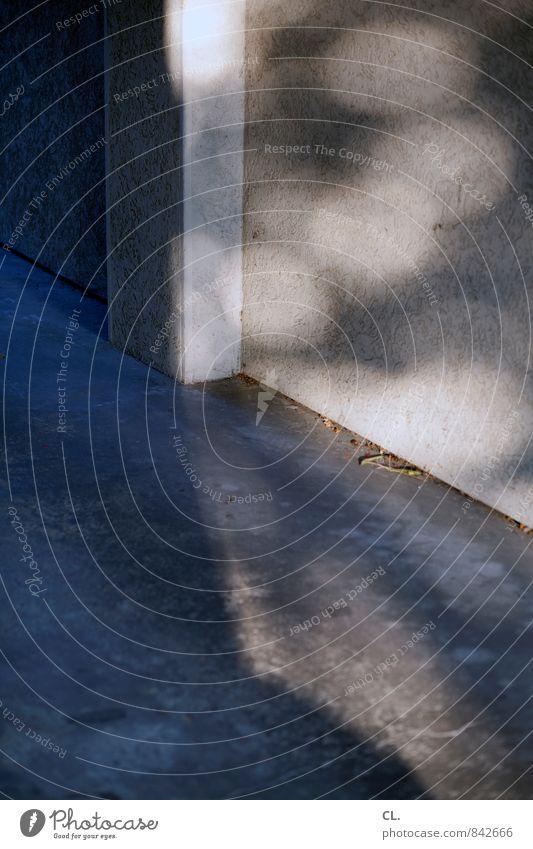 bitte folgen sie dem licht Wand Mauer trist Vergänglichkeit Boden Alltagsfotografie