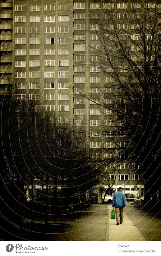 gestern in Lichtenberg schleichen Haus Gebäude Fassade Fenster Hochhaus Plattenbau Raster Trauer Baum Einsamkeit Allee gehen Bauwerk Spaziergang Villa Gasse