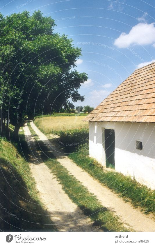 Kellergasse alt Architektur Romantik Idylle historisch Österreich Weinbau Bundesland Niederösterreich