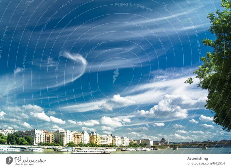 Wolken über Budapest Umwelt Natur Luft Himmel Horizont Sommer Wetter Schönes Wetter Pflanze Baum Fluss Ungarn Europa Stadt Hauptstadt Haus Brücke Bauwerk