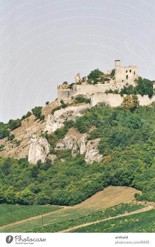 Zeugnis vergangener Macht Architektur Romantik verfallen historisch Zerstörung Produktion Mittelalter Weinbau Bundesland Niederösterreich Burgruine