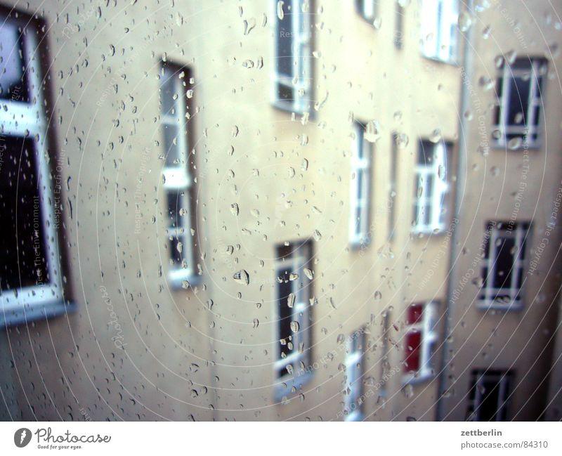 Regen Wasser Haus Fenster Regen Wetter Wohnung Glas Klima Trauer Etage Fensterscheibe Verzweiflung Drache Klimawandel Malediven schlechtes Wetter