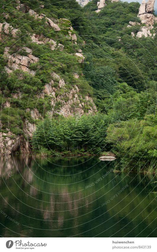 Berg und See Natur Landschaft Pflanze Wasser Sommer Baum Wald Urwald Felsen Berge u. Gebirge groß braun grün Gelassenheit ruhig Reflexion & Spiegelung Farbfoto