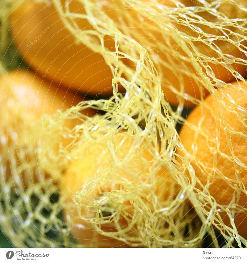 goldene Zitronen gelb Farbe Gesundheit Frucht frisch Wut lecker Vitamin Bioprodukte Schalen & Schüsseln saftig Fruchtfleisch herb Fischereiwirtschaft