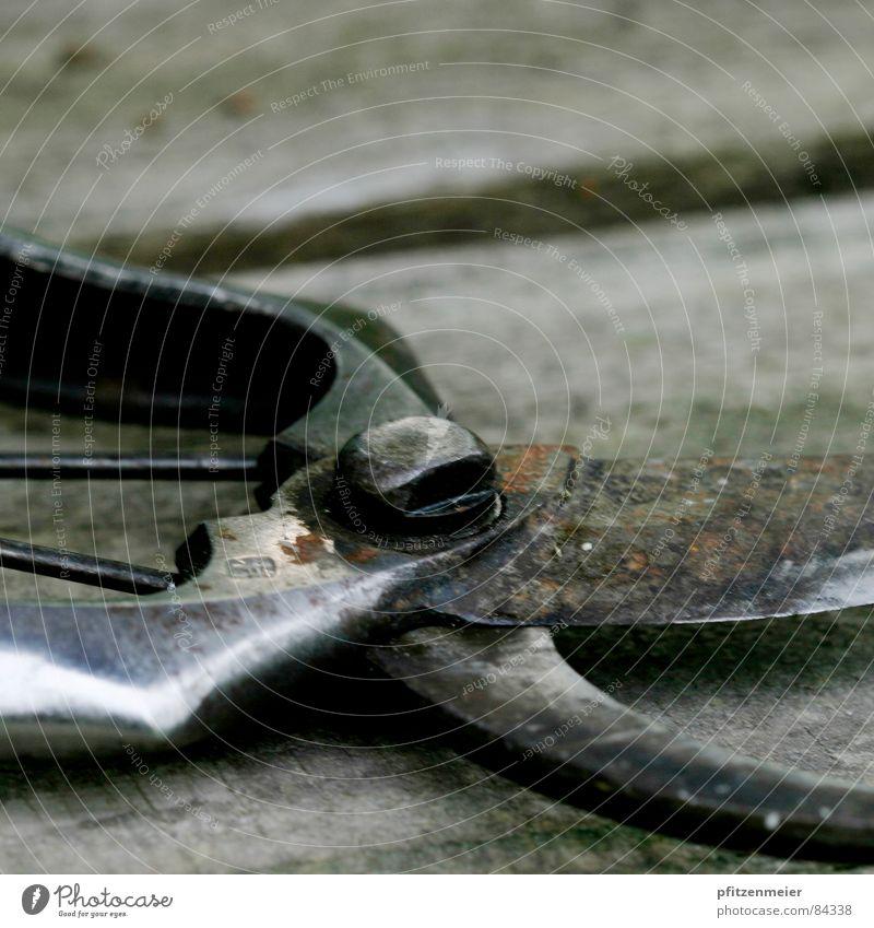 Gartenschere Werkzeug Gärtnerei Handwerk Natur Schere Rost Metall
