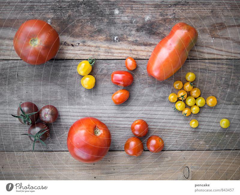 kulturelle vielfalt Gemüse Frucht Ernährung Bioprodukte Vegetarische Ernährung Italienische Küche Natur Sommer Herbst Nutzpflanze authentisch einfach