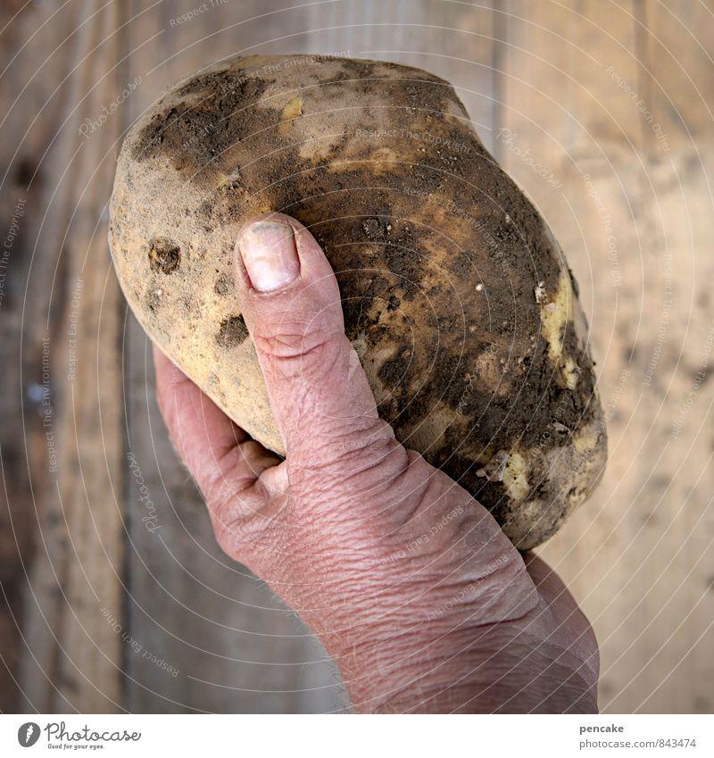 ...haben die dicksten kartoffeln! Mensch Natur alt Sommer Hand Erwachsene Herbst Glück Gesundheit Lebensmittel Arbeit & Erwerbstätigkeit Erde Zufriedenheit
