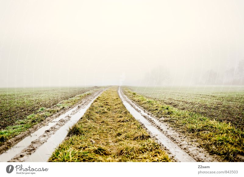 Am Land Umwelt Natur Landschaft Erde Klima Wetter schlechtes Wetter Nebel Wiese Feld Wege & Pfade Traktor dreckig einfach frisch kalt nachhaltig grau grün