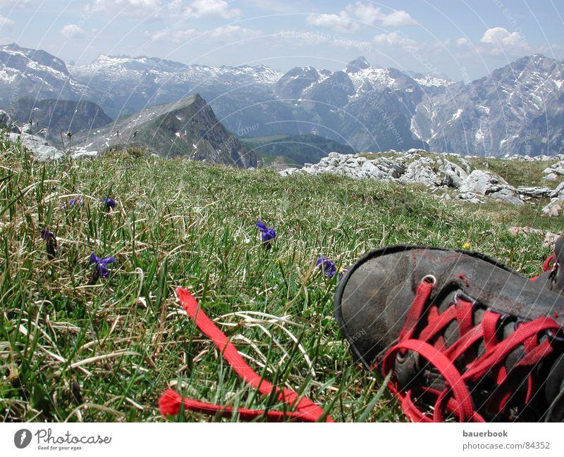 Weitsicht Natur grün Ferien & Urlaub & Reisen Sommer Ferne Umwelt Landschaft Wiese Berge u. Gebirge Freiheit Gras Frühling Bayern Deutschland Schuhe