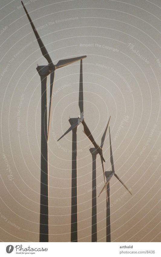 Windkraft im Abendlicht Windkraftanlage Industrie Windkraftwerke Energiewirtschaft erneuerbare Energiequellen Erneuerbare Energie