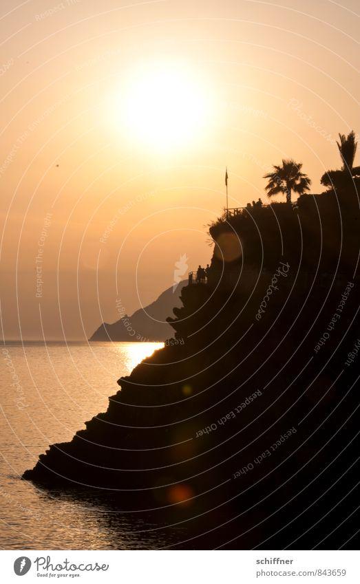 Goldküste Ferien & Urlaub & Reisen Sommer Sonne Meer Landschaft schwarz gelb Küste Felsen orange gold Aussicht Schönes Wetter Italien Bucht Palme