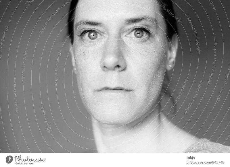 . Stil Frau Erwachsene Leben Gesicht 1 Mensch 30-45 Jahre langhaarig Zopf Pferdeschwanz Blick ernst normal Frauengesicht Vor hellem Hintergrund bleich