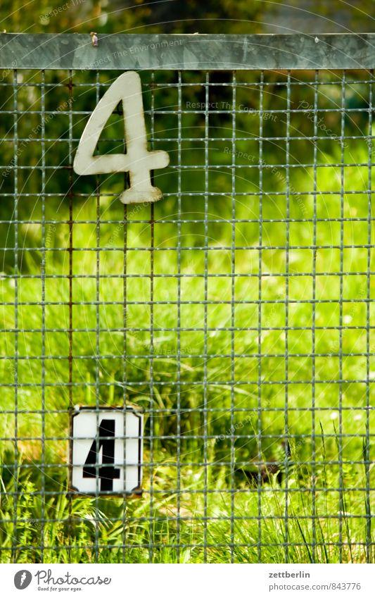 44 Berlin Garten Schrebergarten Kleingartenkolonie Stadt Vorstadt Ziffern & Zahlen Hausnummer Zaun Maschendrahtzaun Nachbar Grenze paarweise Gras Wiese grün