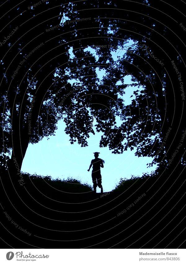 Vom Licht in den Schatten laufen sportlich Fitness Leben Sommer Joggen Mensch feminin Junge Frau Jugendliche 1 18-30 Jahre Erwachsene Natur Pflanze Baum Gras