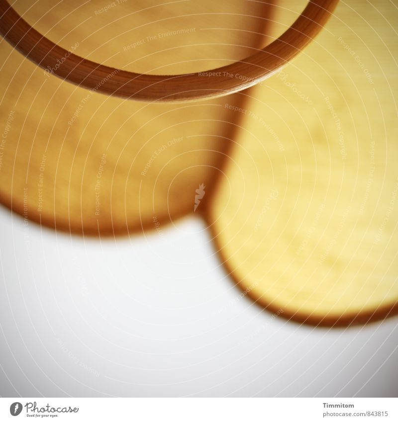 ! trash! | Lampenschirm Mauer Wand Holz außergewöhnlich authentisch braun gelb Häusliches Leben Griff Farbfoto Innenaufnahme Menschenleer Tag