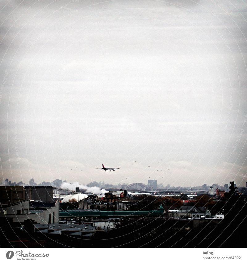 ... vom Problem nicht zu wissen, wie man landen kann Vogelschwarm Einflugschneise Fahrwerk Backsteinfassade Flughafen Flugzeug Flugzeuglandung