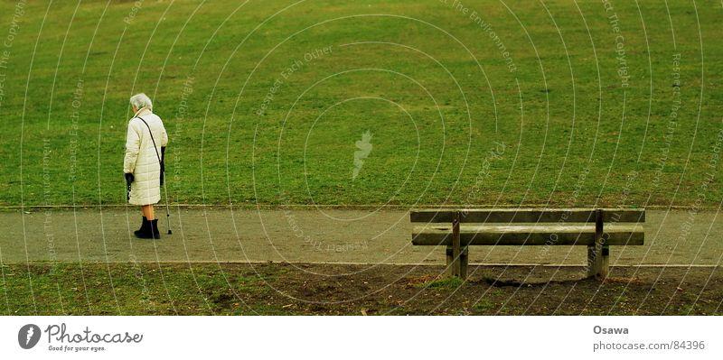 die alte Frau und die Bank Mensch Frau alt grün Einsamkeit Wiese Herbst Senior grau Gras Wege & Pfade gehen Spaziergang Vergänglichkeit Bank Rasen