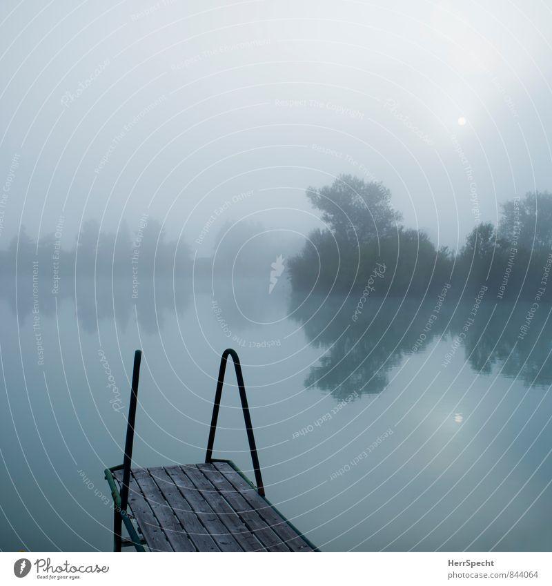 Nebelsee mit kleiner Sonne harmonisch Erholung ruhig Schwimmen & Baden Ferien & Urlaub & Reisen Ausflug Umwelt Natur Wasser Himmel Horizont Sommer Baum Seeufer