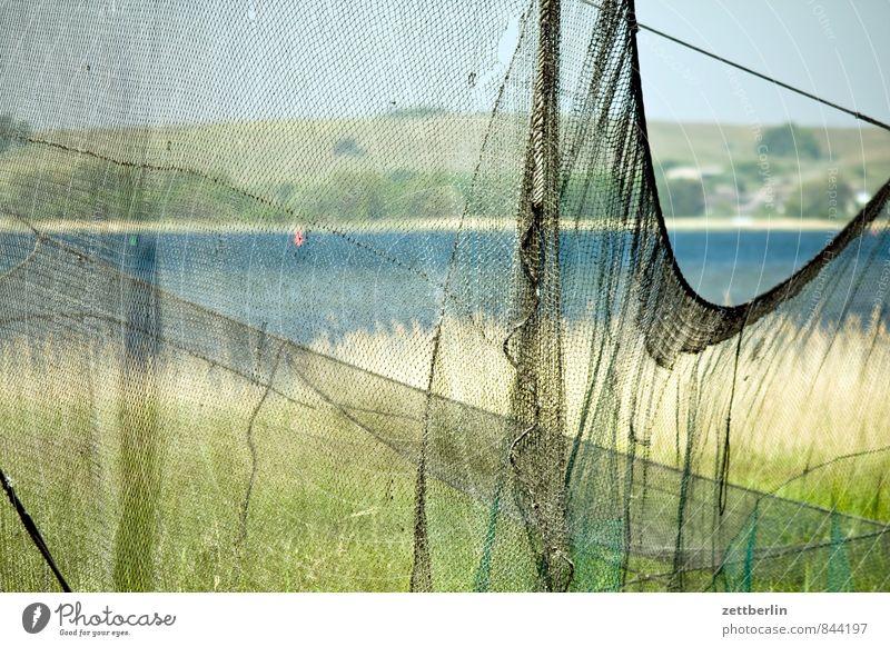 Fischernetz Natur Ferien & Urlaub & Reisen Sommer Meer Erholung ruhig Landschaft Gras Küste See Horizont Seeufer Hügel Netzwerk Ostsee