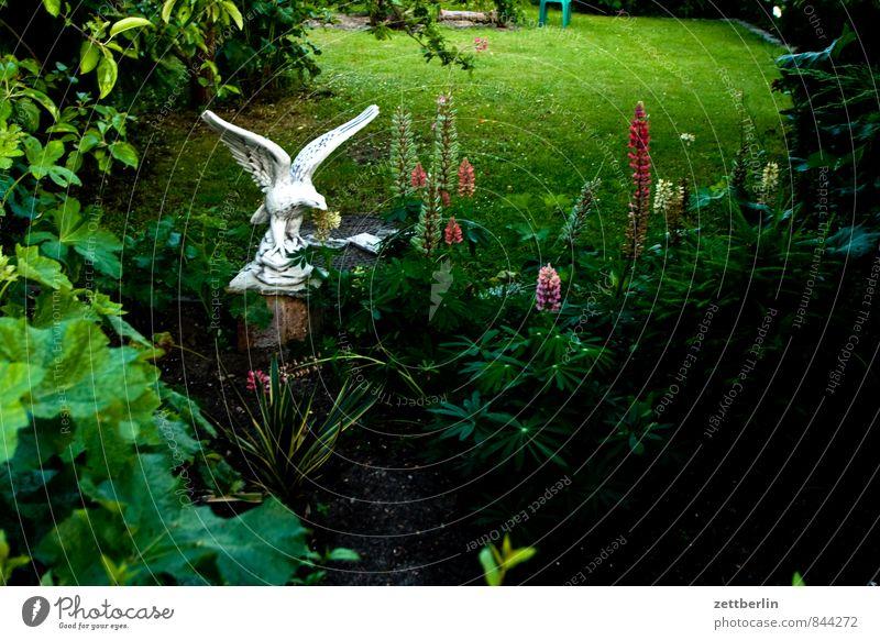 Gips Blume Blüte Garten Schrebergarten Kleingartenkolonie Natur Pflanze Sommer Skulptur Statue Adler Greifvogel Dekoration & Verzierung Kitsch Lupine Abend
