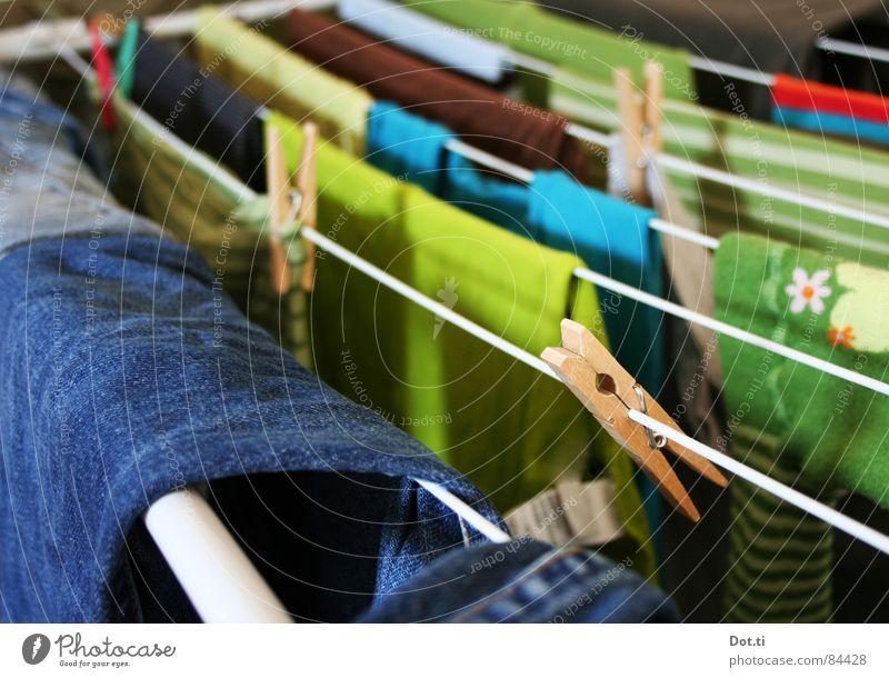 Leinenzwang Häusliches Leben Bekleidung T-Shirt Jeanshose Pullover Strumpfhose Stoff Sauberkeit trocken blau mehrfarbig grün Farbe Wäscheleine Waschtag