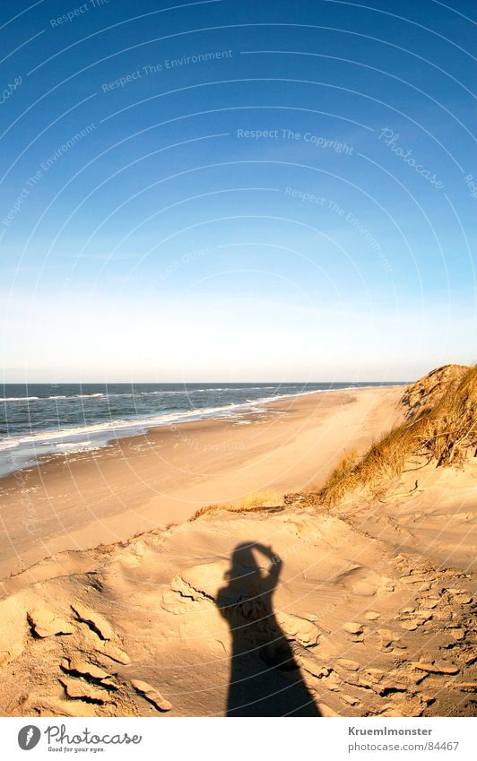 I believe i can touch the sky Sonne Meer Strand Landschaft leer Spuren Schönes Wetter Nordsee Stranddüne Fußspur Himmel Sylt Blauer Himmel Gelenk Plage