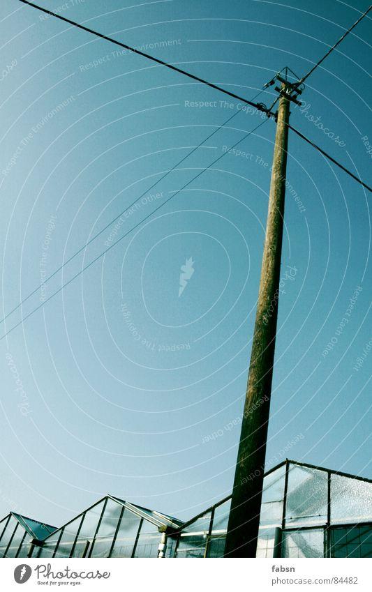GEWÄCHSHAUSRIESE Himmel Natur Sommer Umwelt Holz Energiewirtschaft Elektrizität Wachstum Industrie Gemüse Klimawandel Hochspannungsleitung Stab Smog Gewächshaus Himmelszelt