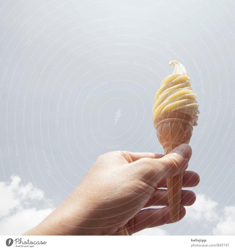 geschmacks-highlight Mensch Mann schön Sommer Hand kalt Erwachsene Wärme Essen Lebensmittel Haut Ernährung Speiseeis Finger weich stoppen