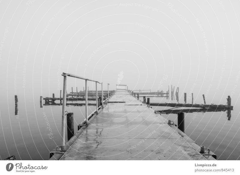 Steg am Ufer der kleinen Müritz Umwelt Natur Landschaft Wasser Himmel Wolken Sonnenlicht Herbst Nebel Seeufer Holz Metall kalt wild weich grau schwarz weiß