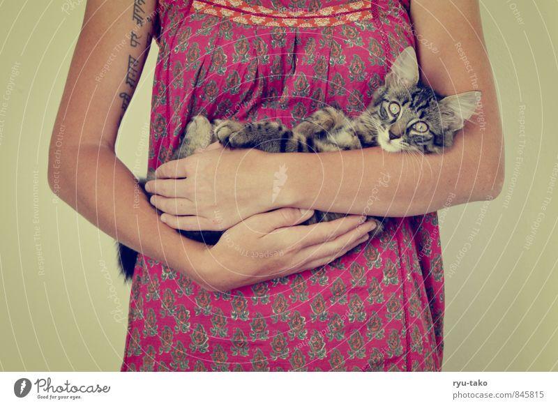 Katzenmami ruhig Tier Tierjunges feminin Zusammensein niedlich retro Schutz Neugier Kleid festhalten Gelassenheit Wachsamkeit Haustier Geborgenheit