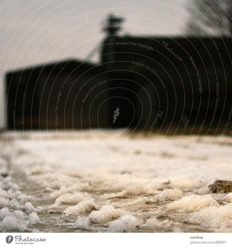 nicht viel drauf dunkel schwarz Silhouette Reifenspuren Morgen ungewiss Angst Zukunft Fragen skeptisch Sorge Winter Umrisslinie unsicher verfallen Gefühle