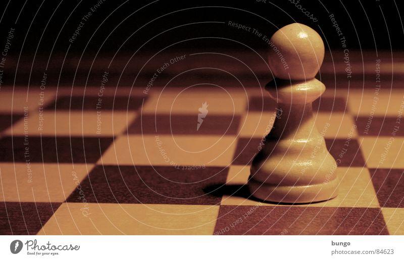 Einsamer Kämpfer Schachbrett Spielen Spielfeld Symbole & Metaphern Holzfigur Schnitzereien Krieg Einsamkeit stehen vertikal Krieger Erfolg Bildung kämpfen