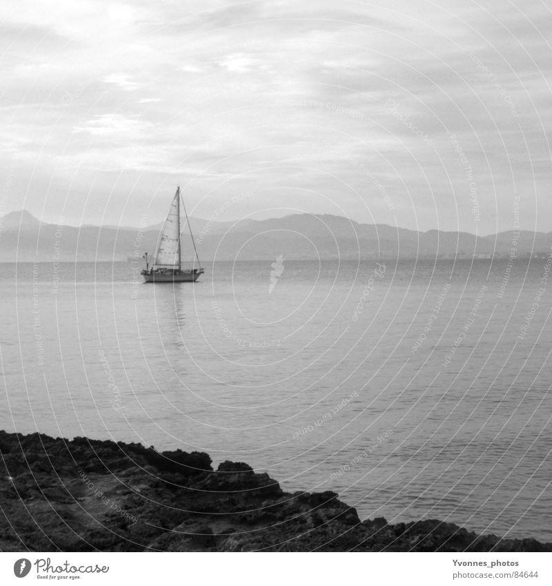 Sehnsuchtsgrau Wasser Himmel Meer Strand ruhig Einsamkeit Ferne Freiheit grau Traurigkeit See Wasserfahrzeug Küste frei Trauer Sehnsucht