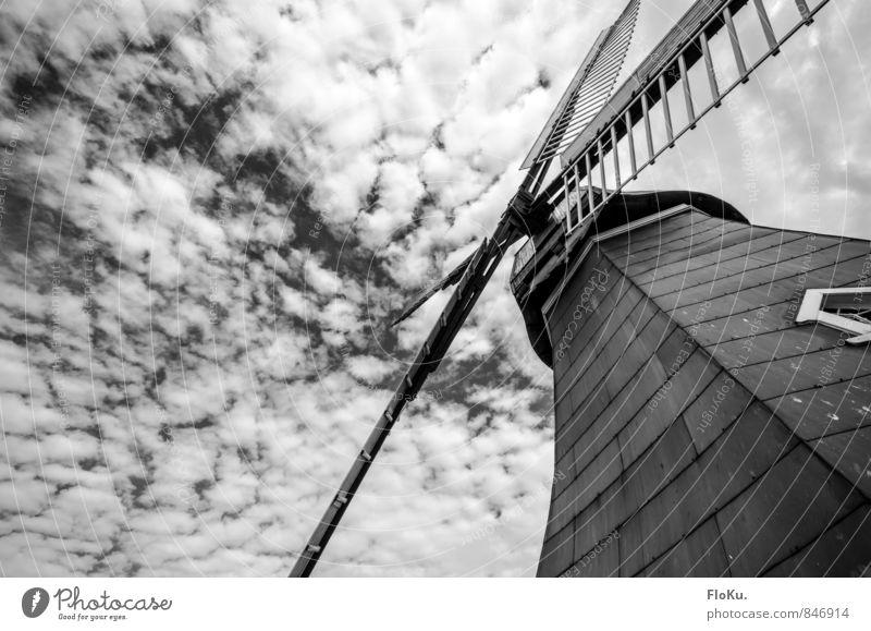 dramatische Mühle Natur Himmel Wolken Wetter bedrohlich dunkel Windmühlenflügel Windrad Schwarzweißfoto Außenaufnahme Menschenleer Tag