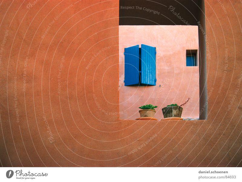 Fenster im Fenster Pflanze rot Ferien & Urlaub & Reisen Haus gelb Farbe orange Hintergrundbild Fassade Frankreich Kaktus Durchblick mediterran Fensterladen