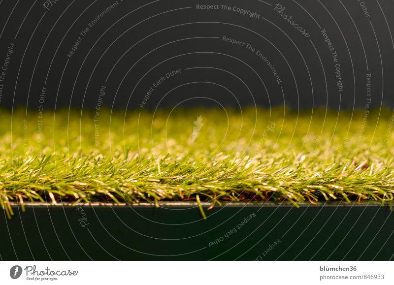 Das Gras wachsen hören... Wiese Kunstrasen Bodenbelag Kunststoff grün schwarz Wachstum Grasbüschel Halm Strukturen & Formen abstrakt Treppe Spielzeug einfach