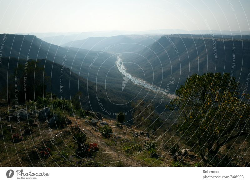 über Berg und Tal Himmel Natur Ferien & Urlaub & Reisen Pflanze Sommer Sonne Landschaft Ferne Umwelt Berge u. Gebirge natürlich Freiheit Felsen Sträucher