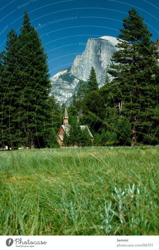 den Ausblick genießen Wiese Aussicht Nationalpark Yosemite NP Ferien & Urlaub & Reisen Freizeit & Hobby Waldwiese Waldlichtung Erholung grün Gras Aussehen USA
