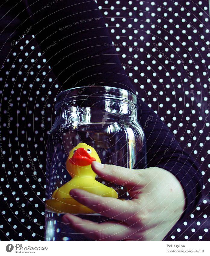 my little friend 2 Hand Umarmen Freundschaft dunkel schwarz Finger gelb Quietschen Reflexion & Spiegelung Vogel Ente duck Arme Glas Punkt Schwimmen & Baden