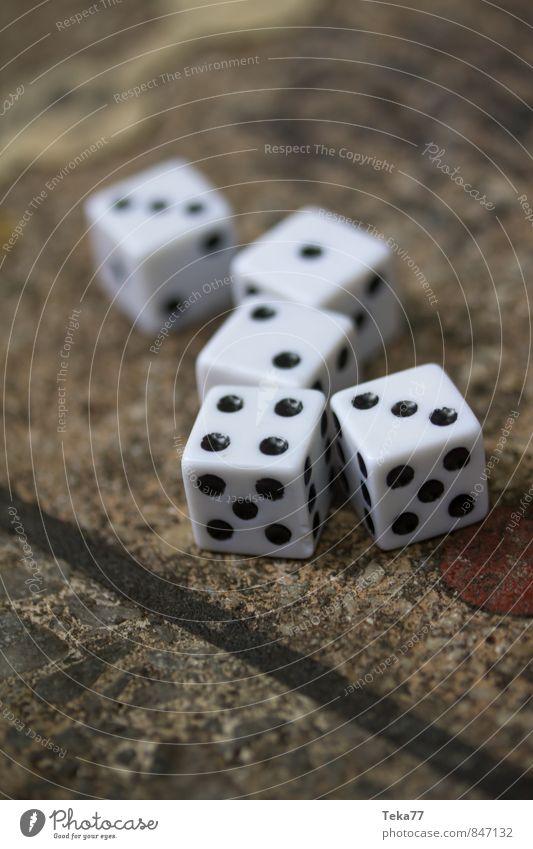 SIEBEN - Die Würfel sind gefallen Stein Zeichen Ziffern & Zahlen Zufriedenheit Glück Kommunizieren Spielen Brettspiel Farbfoto Außenaufnahme Nahaufnahme
