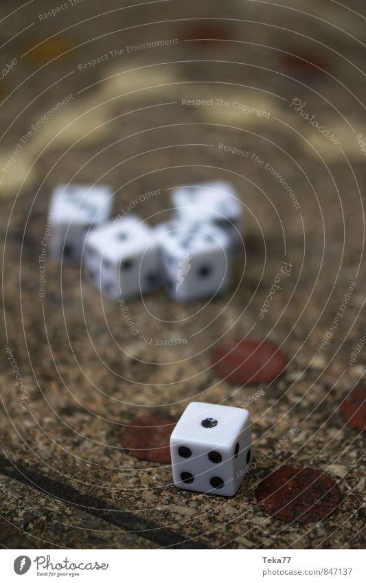 EINS - Die Würfel sind gefallen Kunst Stein Zeichen Ziffern & Zahlen Zufriedenheit Glück Kommunizieren Spielen Brettspiel Kniffel Farbfoto Außenaufnahme