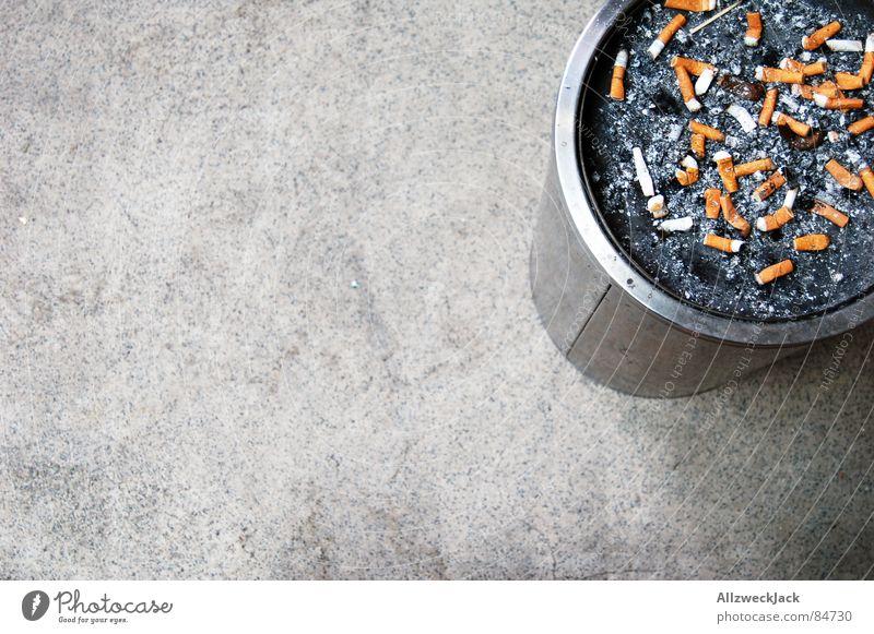 Kippenfriedhof grau dreckig Bodenbelag Suche Rauchen Dinge Warnhinweis Zigarette Ekel Schwäche hässlich Warnschild Moral Aschenbecher Nikotin beenden