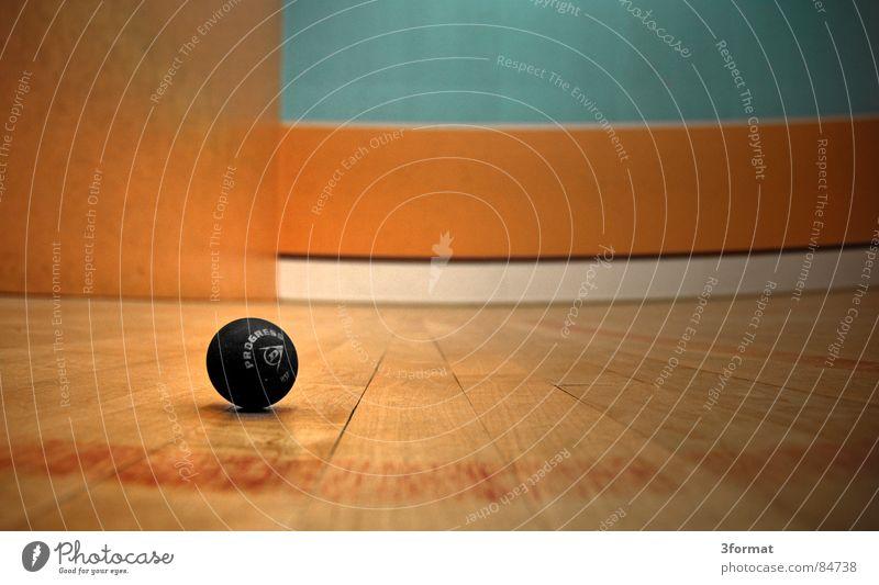 verloren Satzball Squash Spielen Ballsport Sporthalle Parkett Holz geschlagen ruhend gepunktet Spielfeld bewegungslos Langeweile Freizeit & Hobby danach