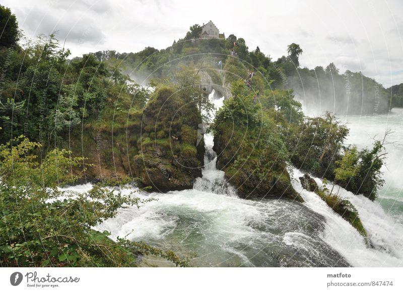 Rheinfall in Schaffhausen Natur Urelemente Wasser Sommer schlechtes Wetter Felsen Berge u. Gebirge Flussufer Wasserfall Menschenleer Sehenswürdigkeit