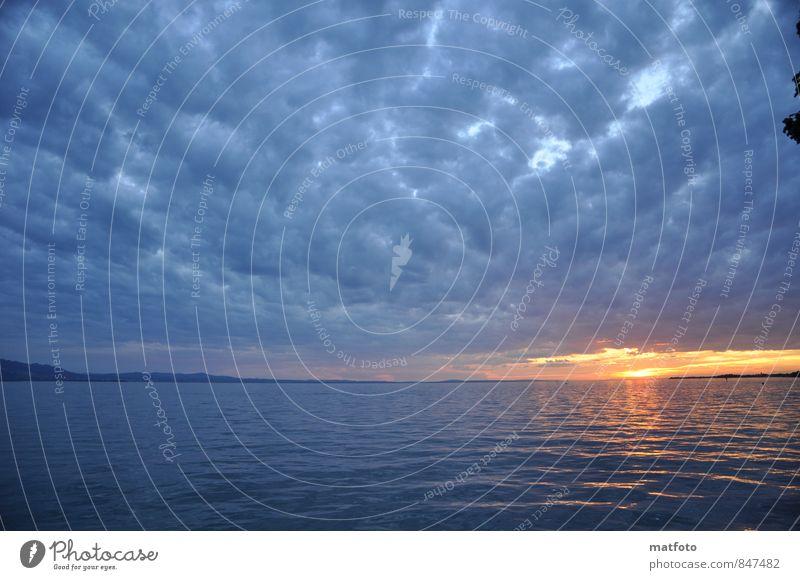 Sonnenuntergang am Bodensee Natur Ferien & Urlaub & Reisen blau schön Wasser Sommer Erholung ruhig Ferne Umwelt Gefühle Freiheit außergewöhnlich See
