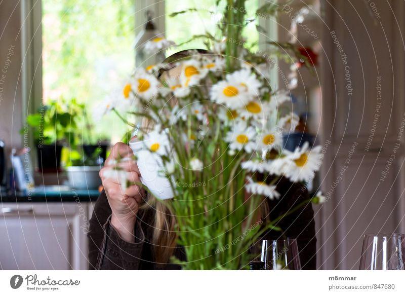 Leukantheme vulgare Kaffeetrinken Getränk Tee Tasse Wohlgefühl Erholung Sommer Küche feminin Frau Erwachsene Kopf Hand Finger 1 Mensch 30-45 Jahre Blume Fenster