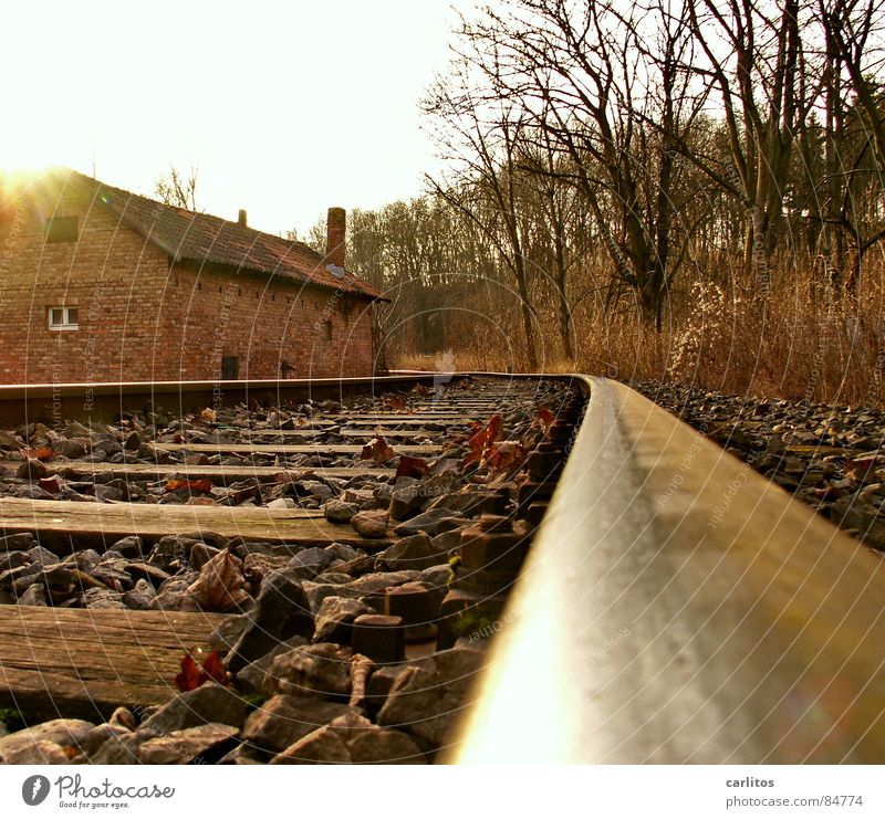 Nebengleis Himmel Natur Wolken Umwelt Landschaft Eisenbahn Sträucher Gleise Rost Kurve Bahnhof Kies Neigung Recycling Lebenslauf Wildnis
